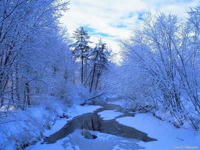 Divná zima v roce 2008