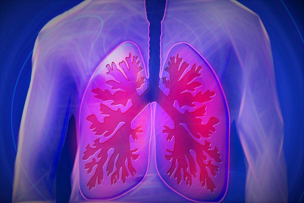 vo2max maximální využití kyslíku plíce