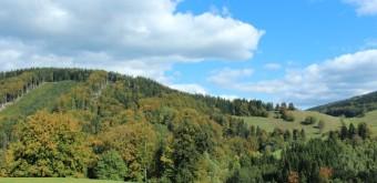 Podzimní příprava aneb jak na běhání na podzim