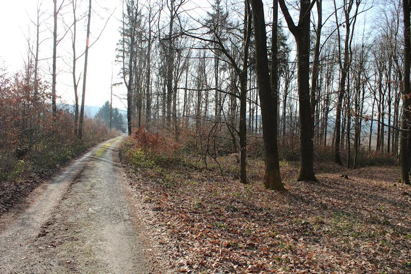 Běh do kopce: cíle a varianty