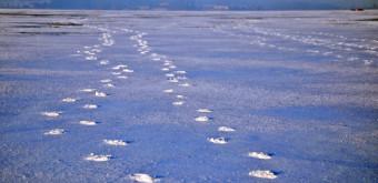 První LIPNO ICE MARATHON – 13. února 2016