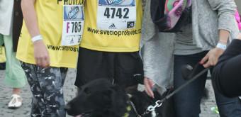 Ondra Zmeškal, jeho pes Black a vodička před Birell Grand Prix