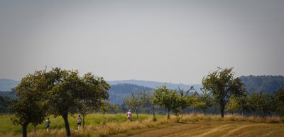 Hinterhermsdorf - Běžíme na Weifberg