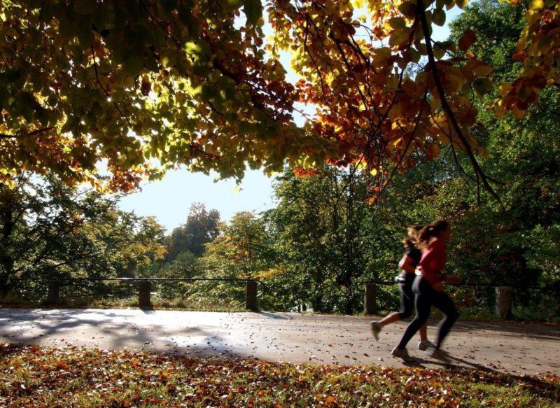 Začátek podzimu – vhodné období, kdy dát běhání šanci + plán