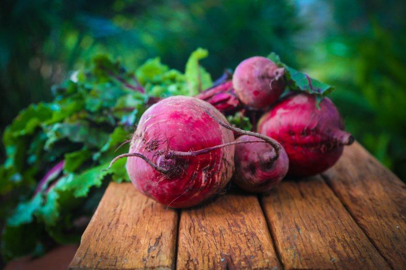 Červená řepa – zázračná superpotravina pro běžce
