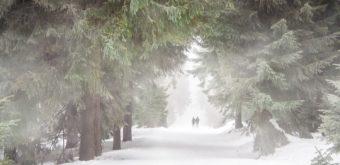 Hlavně buďte vidět! Jak běhat v zimě + další tipy