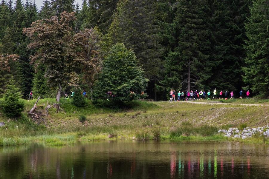 Běhej lesy 2019 Slavkovský les