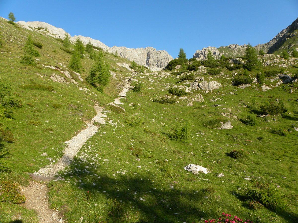 běh do kopce