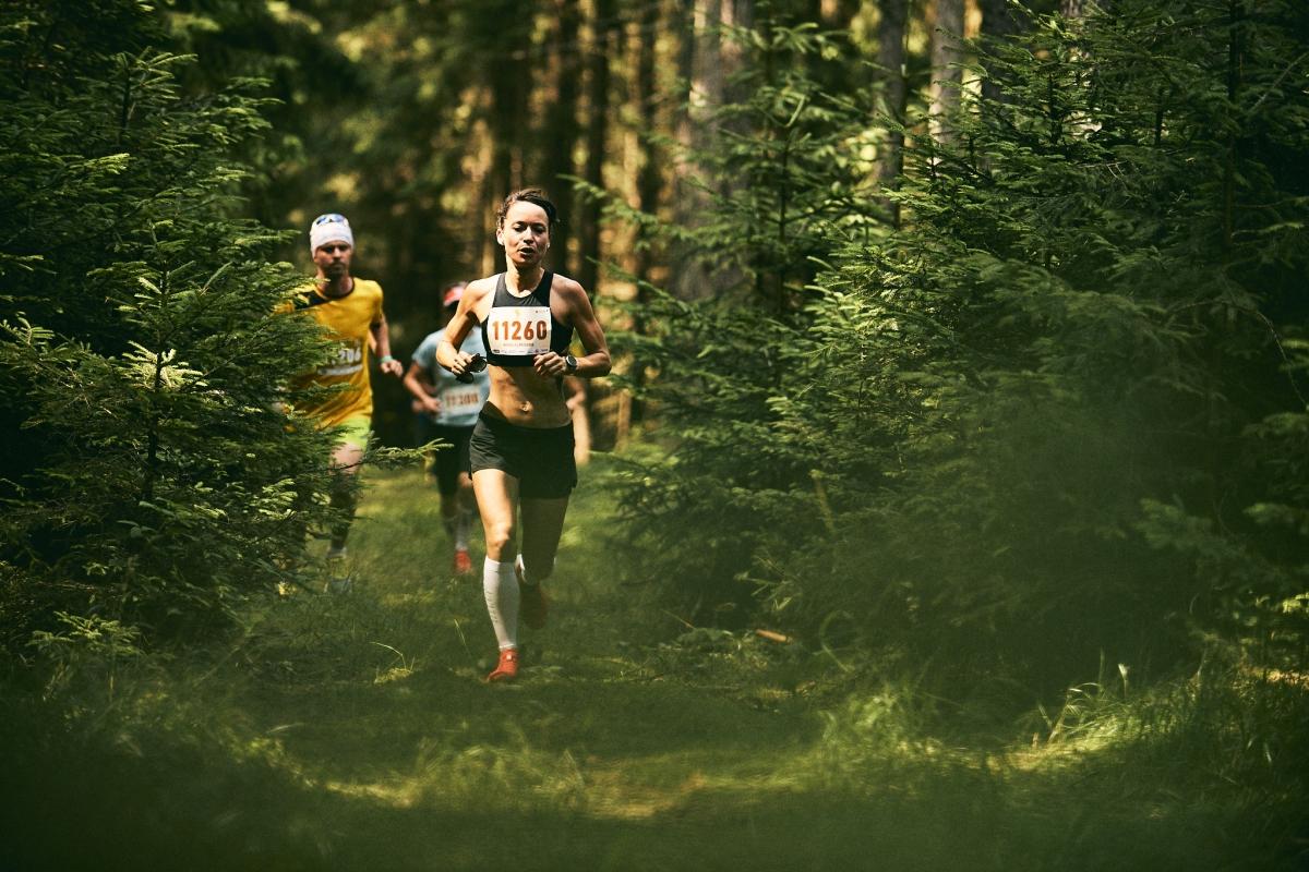 Běhej lesy Brdy