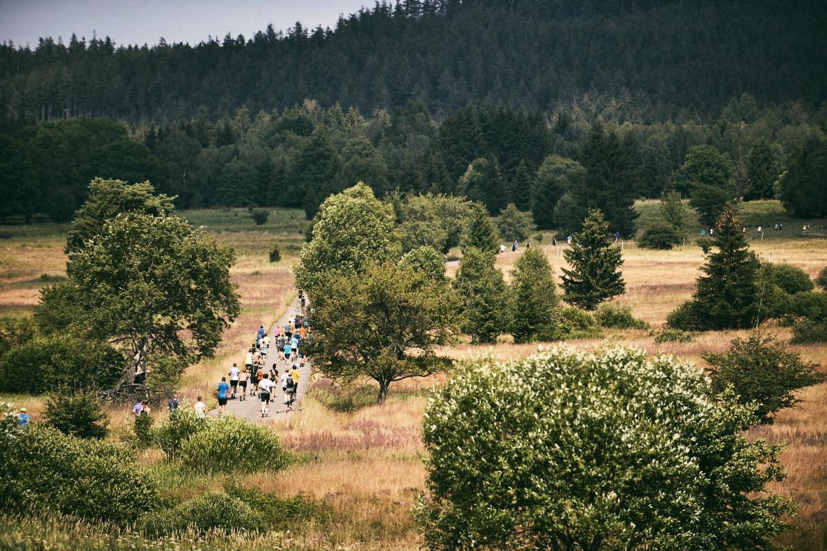 Běhej lesy Brdy 2021