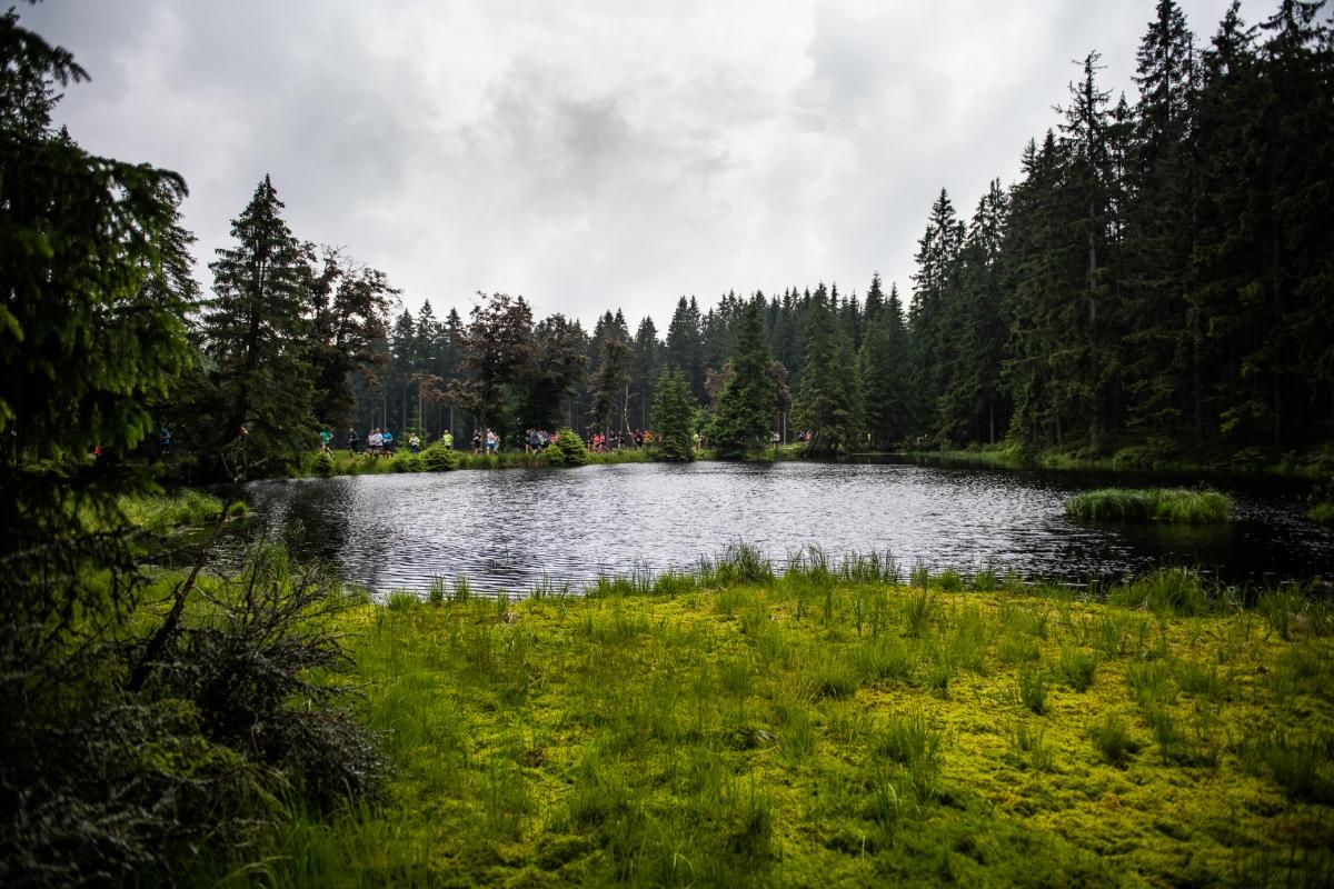 Běhej lesy Slavkovský les 2020